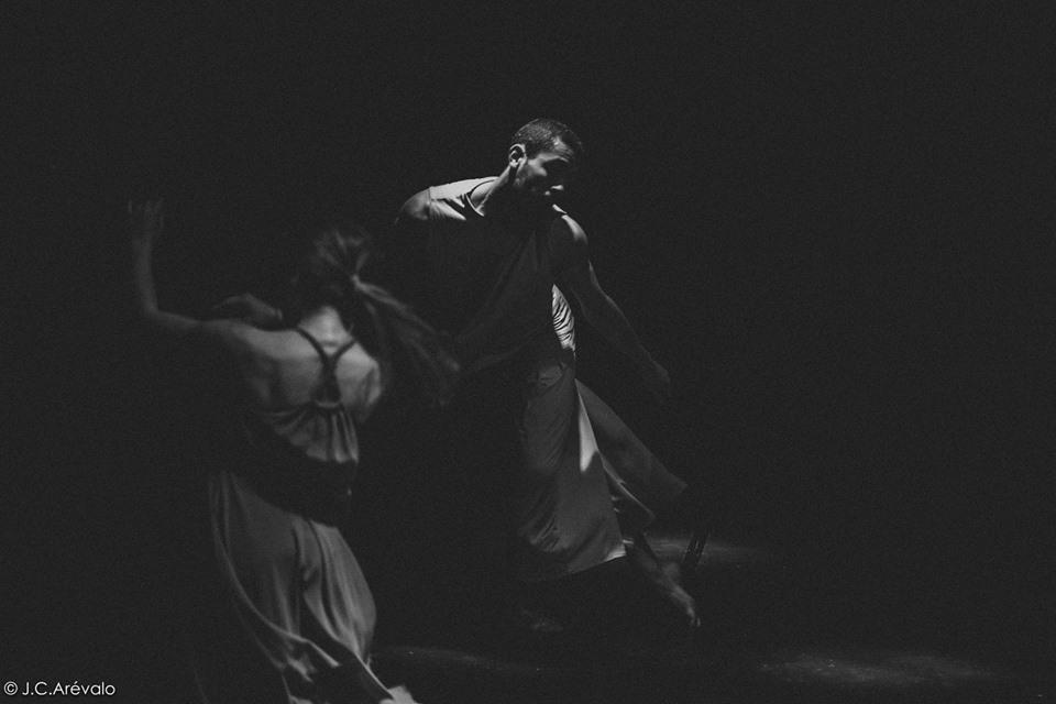 Proyecto Cosmos: Ecología, danza e imagen. Compañía Residente de Camille Hanson en La Pradera.