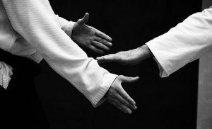 Descubre el arte del Aikido en La Pradera